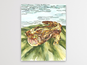 Hellbender 2 Watercolor Print