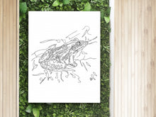 Load image into Gallery viewer, Oklahoma State Frog. Bullfrog Line Art Print