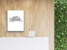Load image into Gallery viewer, Pennsylvania State Turtle. Eastern Box Turtle Line Art Print