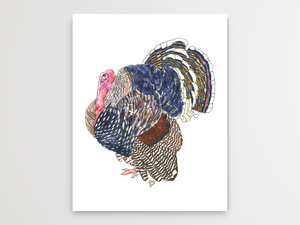 Turkey Watercolor Print