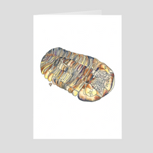 Load image into Gallery viewer, Fossil Greeting Card