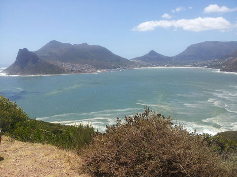 VeMe4u About Us Photo of South Africa