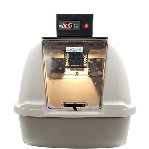 Image of Lifeline Pet Supplies Puppy Kitten Pet Incubator Icu - Lifeline Pet Supplies
