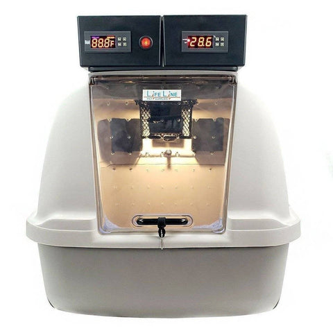 Image of Lifeline Pet Supplies Puppy Kitten Pet Incubator Icu with Digital Humidity - Lifeline Pet Supplies