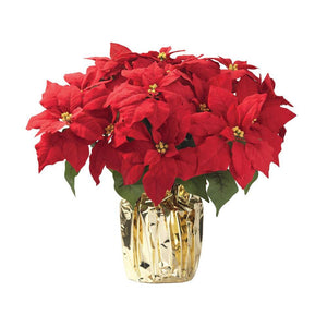 "7"" Red Poinsettia"