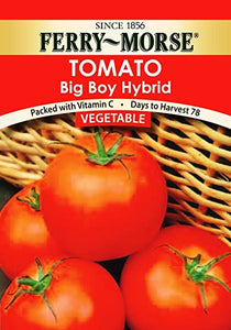 Tomato Big Boy Seeds