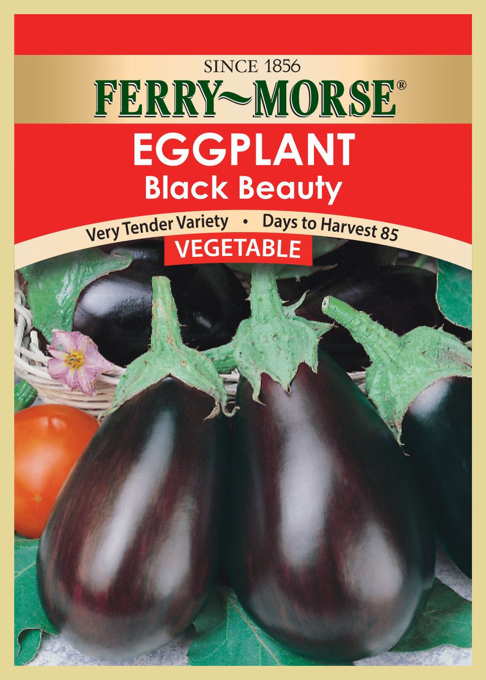 Eggplant Black Beauty Seeds