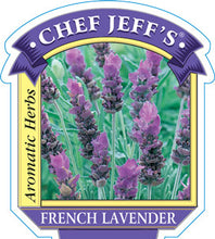 Load image into Gallery viewer, Chef Jeff's French Lavender (4in)