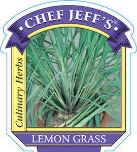 "Chef Jeff's Lemon Grass (4"" Container)"