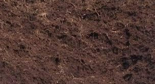 Bulk Shredded Hardwood Mulch (1 Cubic Yard)