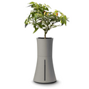 Botanium Self-Watering Hydroponic Smart Planter (Grey)