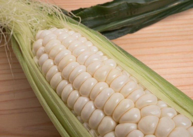 White Corn - Our Own Jersey!