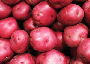 Potatoes - Red