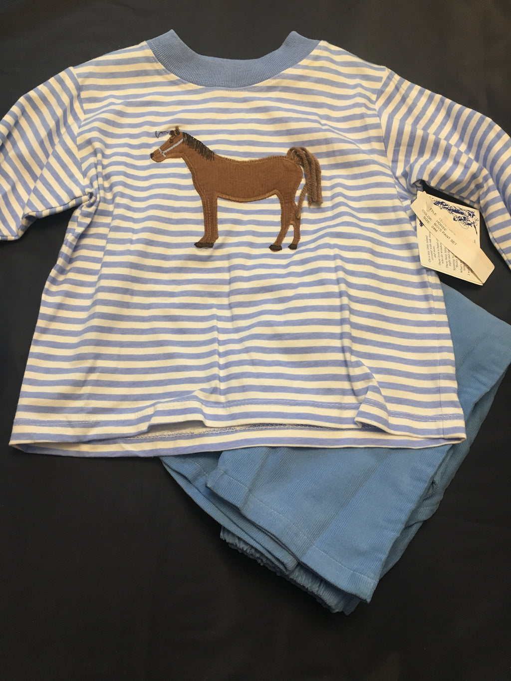Boy horse long sleeve pant set 24m