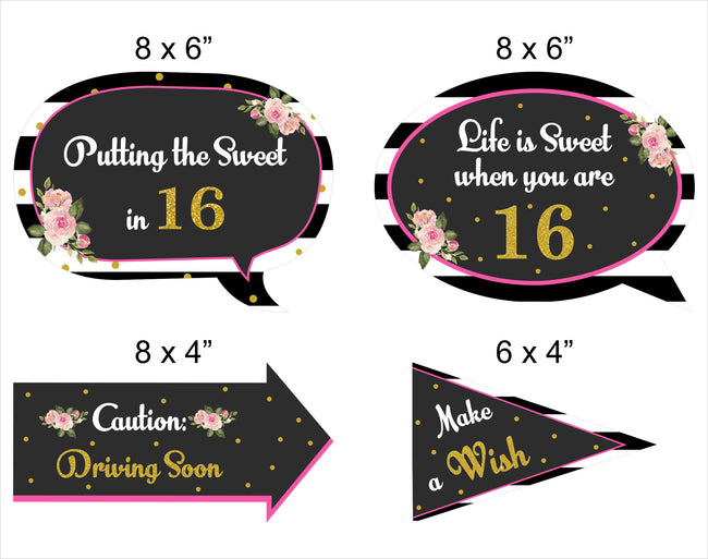 16Th Milestone - 10 Piece Birthday Party Photo Booth Props Kit