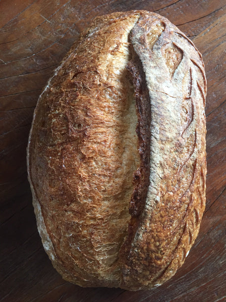 Levain campagne