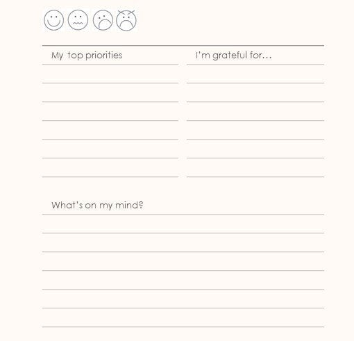 Zenit Wellness Journal, Clarity Journal