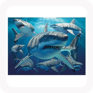 3D GREAT WHITE SHARK PICTURE / PLACEMAT