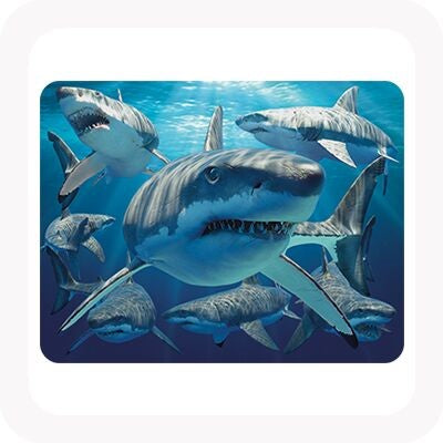 3D GREAT WHITE SHARK MAGNET