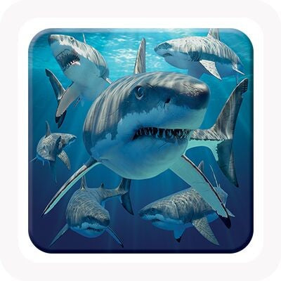 3D GREAT WHITE SHARK COASTER