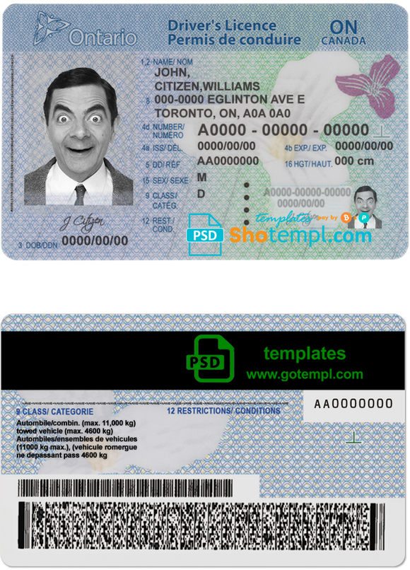Canada Ontario driving license template in PSD format