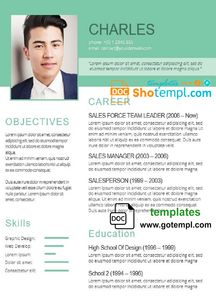 Your Professioanl Resume Template in WORD format