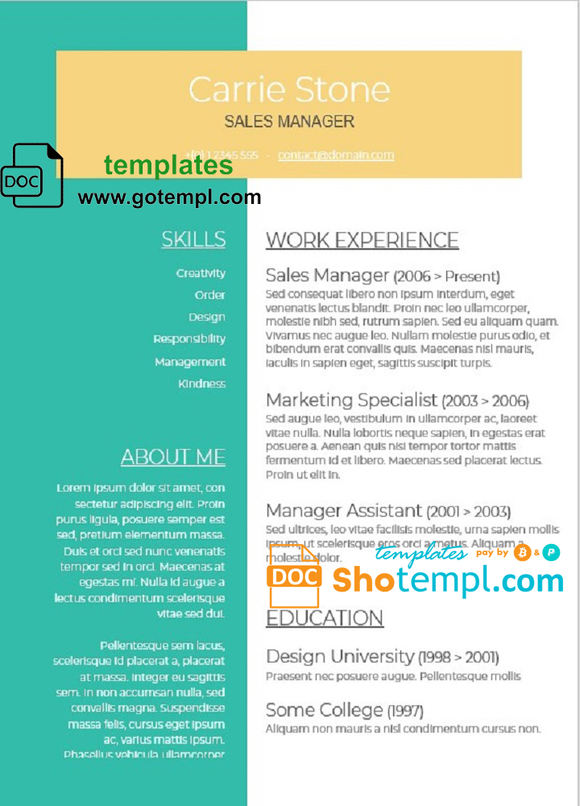 Modern and Fully Editable CV template in WORD format