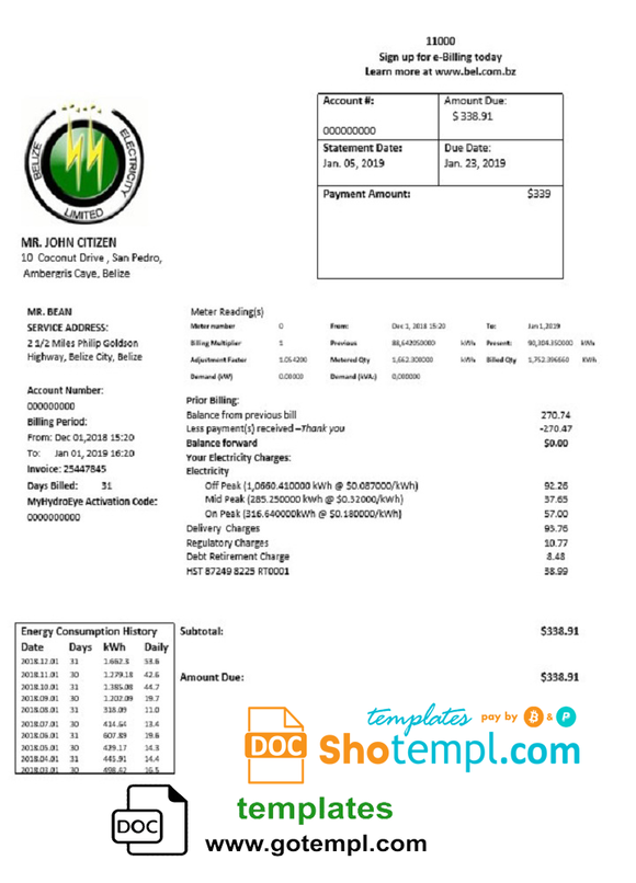 Belize Electricity Limited electricity utility bill template in Word and PDF format