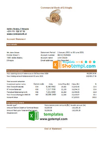 Ethiopia Commercial Bank statement easy to fill template in Excel and PDF format