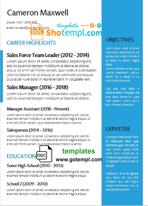 Fully Editable CV template in WORD format