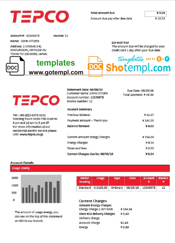 Japan Tokyo Electric Power Company electricity utility bill template in Word and PDF format