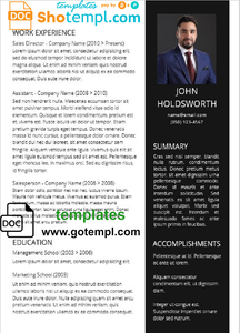 Stylish Professional Resume Template in WORD format