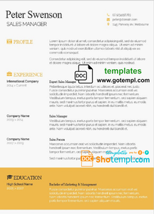 Modern and Professional Resume template in WORD format
