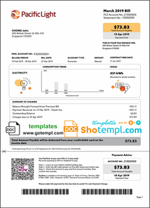 Singapore Pacific Light electricity utility bill template in Word and PDF format