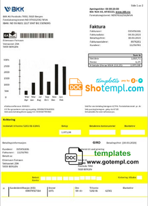 Norway BKK electricity utility bill template in Word and PDF format, good for address prove