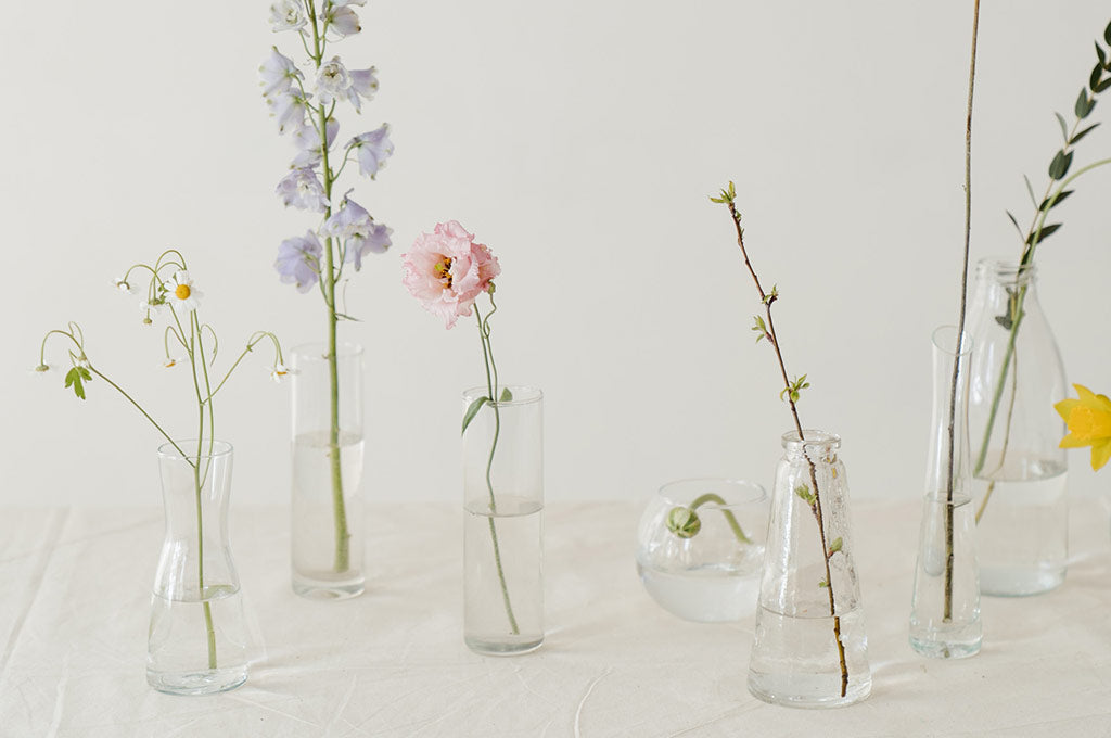 a variety of flowers in vases of different shapes, on a white background