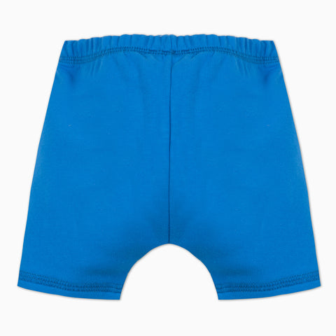 Blue fleece shorts