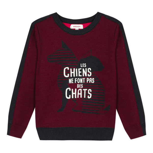 Cats & dogs graphic sweater