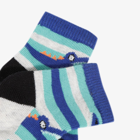 Alligator striped socks