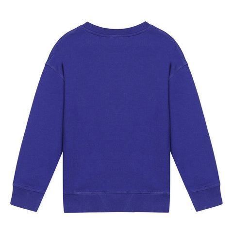 Blue sweatshirt with elephant visual