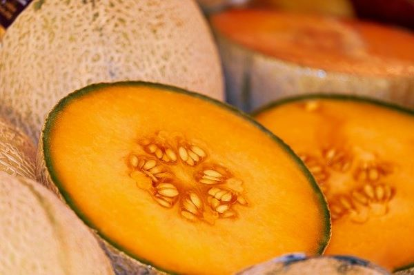 Cantaloupe - whole - Mr Fresh Foods Pty Ltd