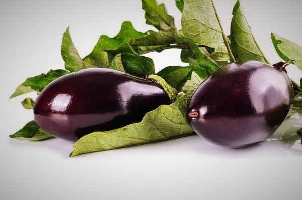 Eggplant - Mr Fresh Foods Pty Ltd