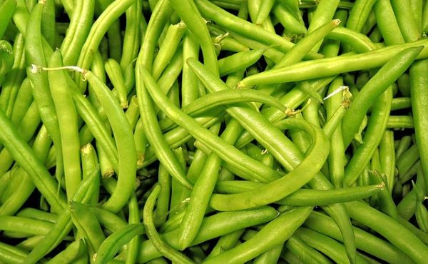 Beans - fresh green or yellow - Mr Fresh Foods Pty Ltd