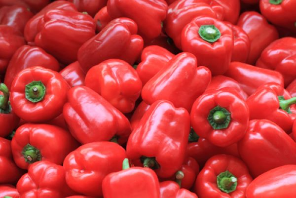 Capsicums - Red - Mr Fresh Foods Pty Ltd