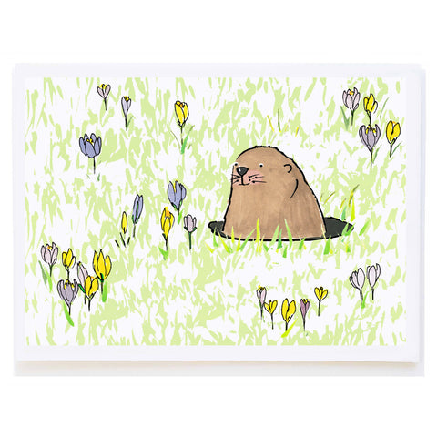Gopher and Crocuses