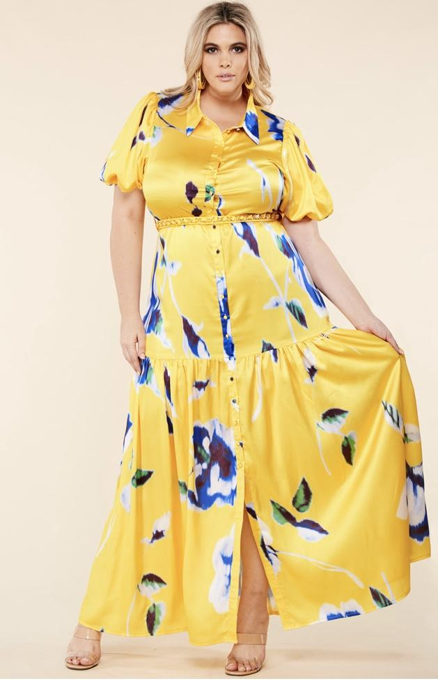 Anaya Silky Maxi Dress (Curvy)