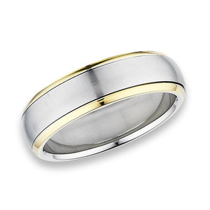 stainless steel ring with 2 layers