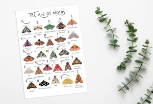 The A-Z of Moths Art Print
