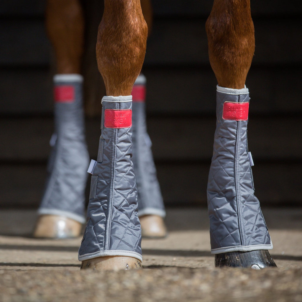 Fair Price Equestrian | Equilibrium Therapy Magnetic Chaps