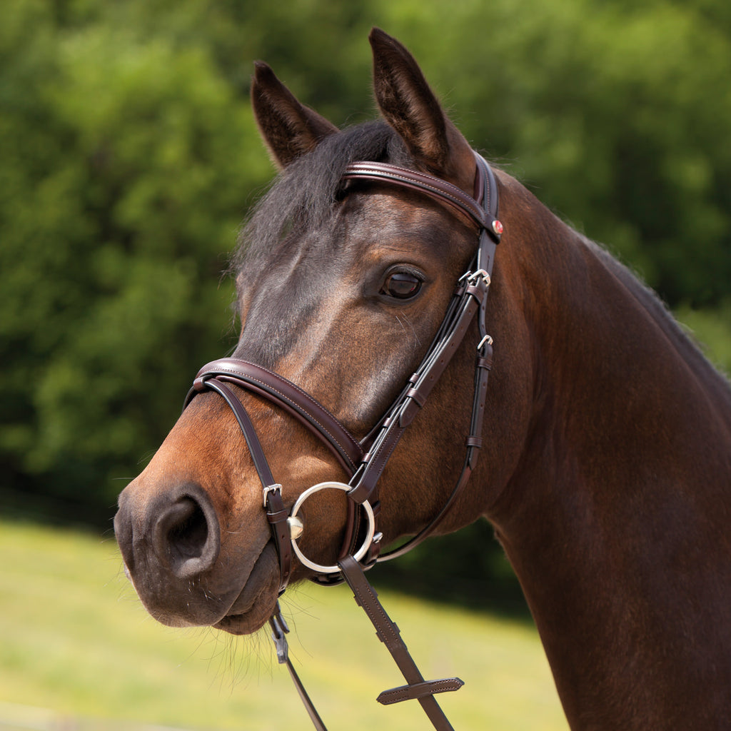 Fair Price Equestrian | Kieffer Ergonomic Event Snaffle Bridle